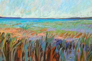 Summer's Coast by Jane Schmidt