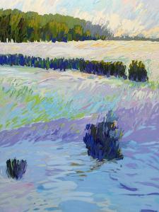 When It Snows by Jane Schmidt