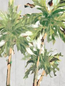 Caribbean Palm Trees by Jane Slivka