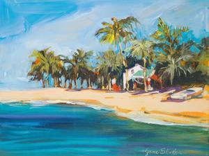 Havana Nights by Jane Slivka