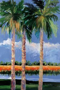 Palm Coast by Jane Slivka