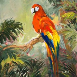 Parrots at Bay I by Jane Slivka