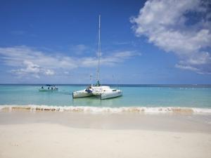 Bay Islands, Roatan, West Bay, Man Reading Book on Catamaran, Honduras by Jane Sweeney