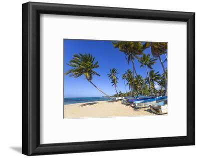 Beach at Las Terrenas, Samana Peninsula, Dominican Republic, West Indies, Caribbean