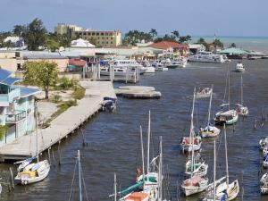 Belize Harbour, Belize City, Belize, Central America by Jane Sweeney