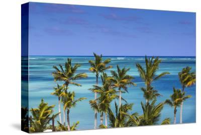 Dominican Republic, Punta Cana, Cap Cana, Sanctuary Cap Cana Resort and Spa