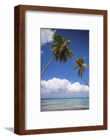 Dominican Republic, Punta Cana, Parque Nacional Del Este, Saona Island, Catuano Beach