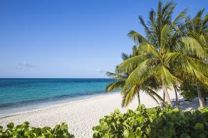 Playa Esmeralda, Holguin Province, Cuba, West Indies, Caribbean, Central America by Jane Sweeney