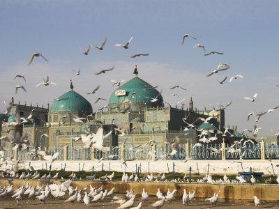 The Famous White Pigeons, Shrine of Hazrat Ali, Mazar-I-Sharif, Balkh Province, Afghanistan