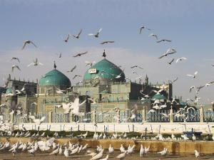The Famous White Pigeons, Shrine of Hazrat Ali, Mazar-I-Sharif, Balkh Province, Afghanistan by Jane Sweeney