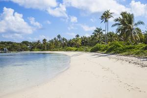 Tihiti Beach, Elbow Cay, Abaco Islands, Bahamas, West Indies, Central America by Jane Sweeney
