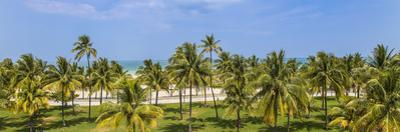 U.S.A, Miami, Miami Beach, South Beach, Ocean Drive, View over Lummus Park Towards South Beach by Jane Sweeney