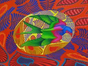 Swallow-Tailed Kite, 2012 by Jane Tattersfield