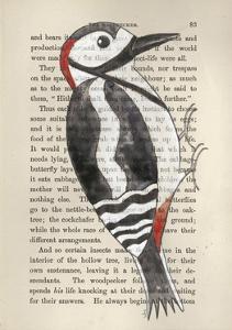 Great Spotted Woodpecker by Jane Wilson