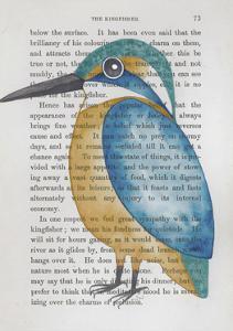 Kingfisher by Jane Wilson