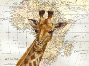 Out of Africa by Jane Wilson