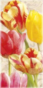 Glowing Tulips I by Janel Pahl