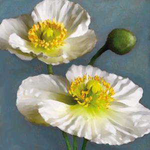 Poppy Parfait I by Janel Pahl