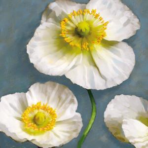 Poppy Parfait II by Janel Pahl