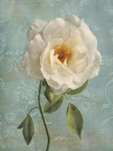 Purity I by Janel Pahl