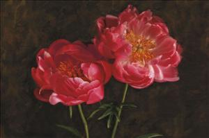 Romance by Janel Pahl