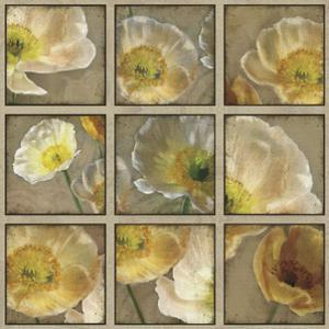Shades of Poppies by Janel Pahl