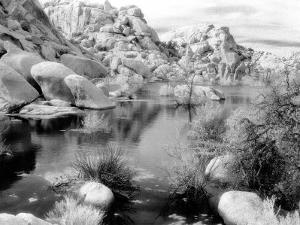 Barker Dam, Joshua Tree National Park, California, USA by Janell Davidson