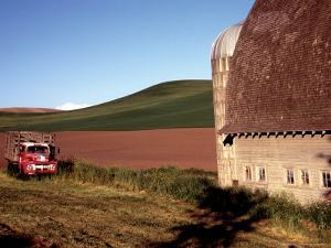 Barn and Truck in Palouse Area, Washington, USA by Janell Davidson