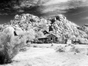 Desert Queen Ranch, Joshua Tree National Park, California, USA by Janell Davidson