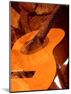 Double Exposure of Guitar and Rocks by Janell Davidson