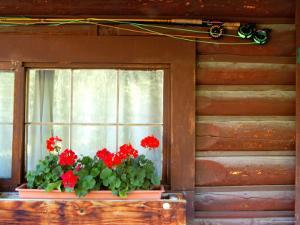 Fly Fishing Rods on Cabin Wall, Lake City, Colorado, USA by Janell Davidson
