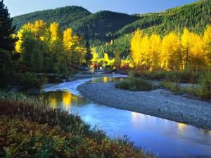 Wenatchee River, Central Cascades, Washington, USA by Janell Davidson