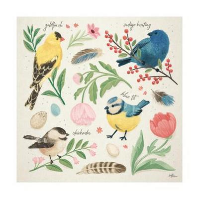 Bird Study II
