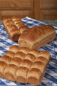 Multigrain rolls and loaf on cooling rack on counter covered by tea towel. by Janet Horton