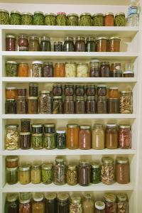 Pantry of preserved fruits and vegetables in canning jars. (PR) by Janet Horton