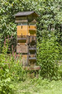 Snoqualmie, Washington State, USA. A Warre beehive. by Janet Horton