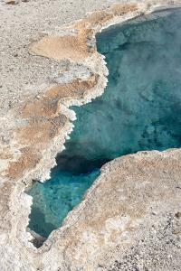 Yellowstone National Park, Wyoming, USA. Blue Star Spring is located in Upper Geyser Basin. by Janet Horton