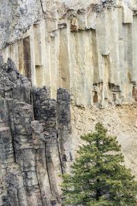 Yellowstone National Park, Wyoming, USA. Rock columns in the canyon north of Tower Fall. by Janet Horton