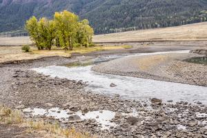 Yellowstone National Park, Wyoming, USA. Scenic landscape of Slough Creek. by Janet Horton