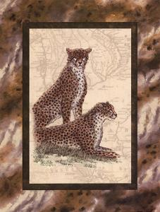 Cheetahs by Janet Kruskamp