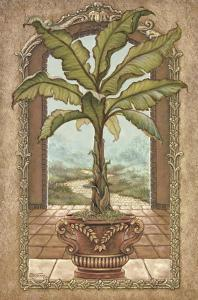 Classical Banana Tree by Janet Kruskamp