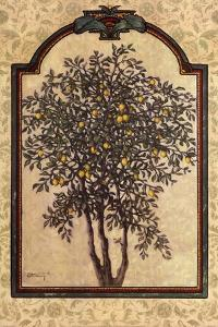 Classical Lemon by Janet Kruskamp