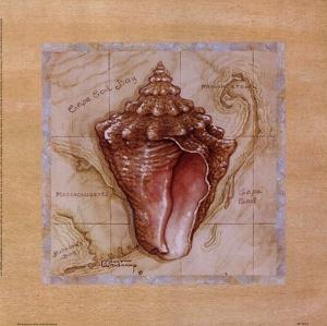 Sea Treasures III by Janet Kruskamp
