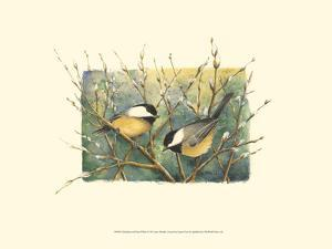 Chickadees and Pussy Willow by Janet Mandel