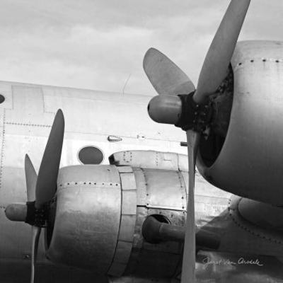 Vintage Flight I by Janet Van Arsdale