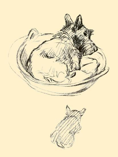 Janet-Lucy Dawson-Art Print
