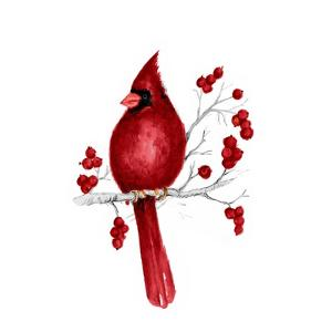 Winter Cardinal in Red II by Janice Gaynor