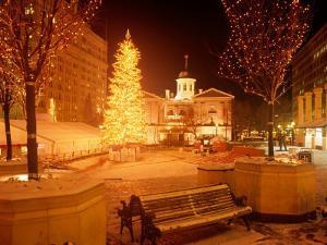 Christmas Tree on Snowy Night in Pioneer Courthouse Square, Portland, Oregon, USA by Janis Miglavs