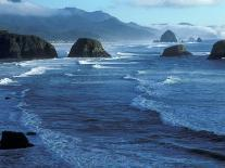 Kites Flying on the Oregon Coast, USA-Janis Miglavs-Photographic Print