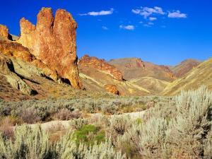 Dirt Trail Through Sagebrush and Tall Redstone Cliffs, Owyhee Area, Oregon, USA by Janis Miglavs